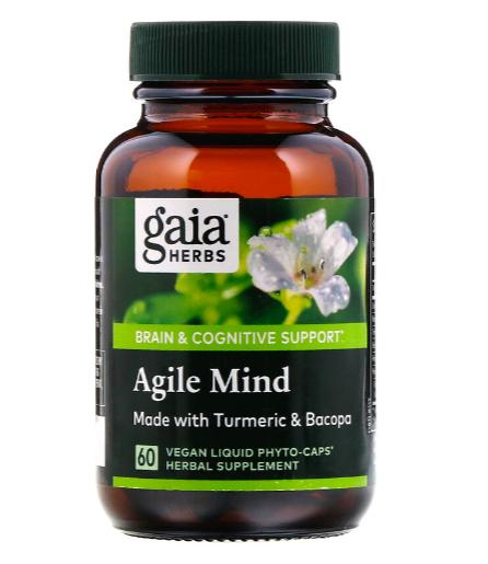 Gaia Agile Mind