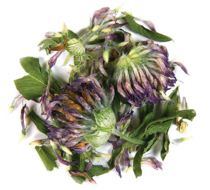 Frontier Organic Red Clover 1 oz