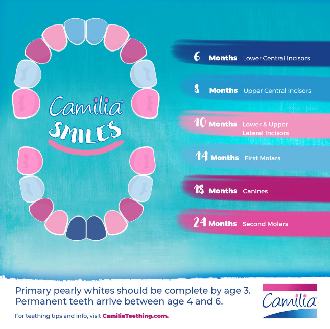Boiron Camilia Teething Relief Single Doses 10 Pack