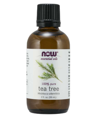 Now Essential Oil Tea Tree 2 oz